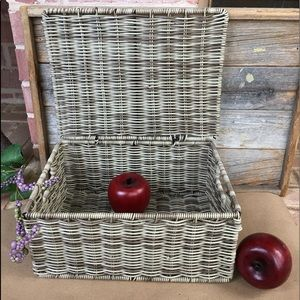 Faux Rattan Wicker Wire Frame Attached Lid Basket